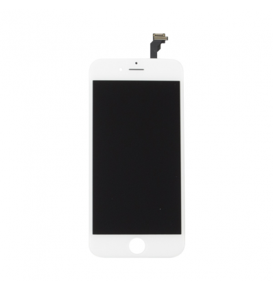 iPhone SE Display Assembly Wit